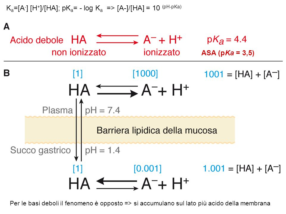 Ka=[A-] [H+]/[HA]; pKa= - log Ka => [A-]/[HA] = 10 (pH-pKa)